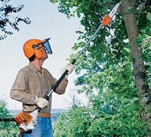 HT 131 Pole Pruner from STIHL, in use