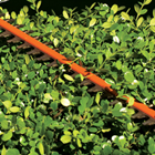 Double-Sided Cutting Blades - STIHL hedge trimmers with double-sided cutting blades cut both directions.