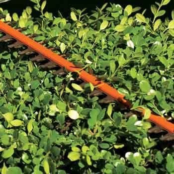 STIHL hedge trimmers with double-sided cutting blades cut both directions