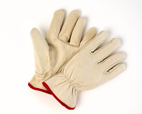10I-AU-12 Unlined Cowhide Drivers Gloves
