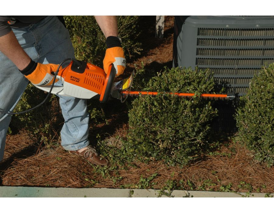 STIHL HSA 66 in use