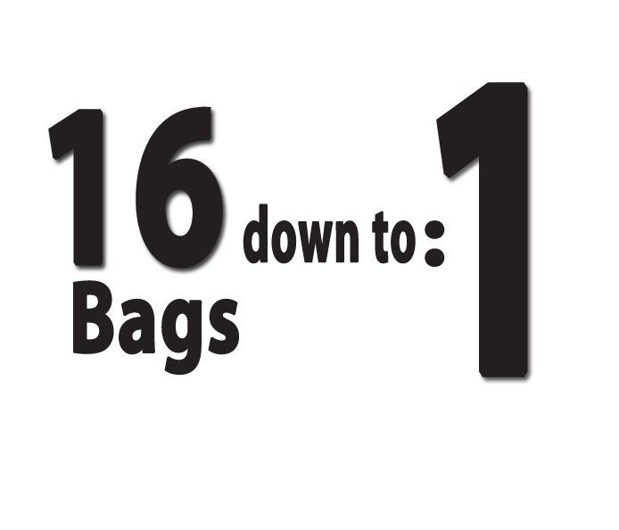 reduce your yard waste from 16 bags down to 1!
