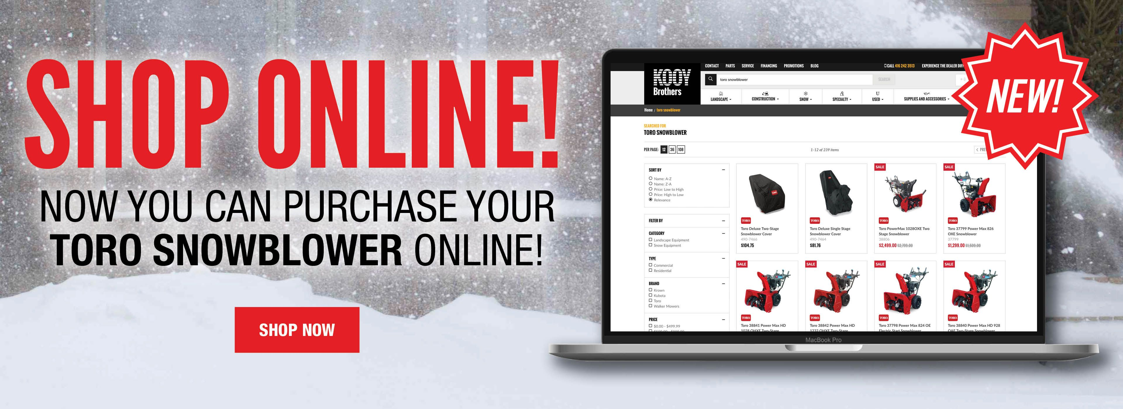 Buy Your Snowblower Online!