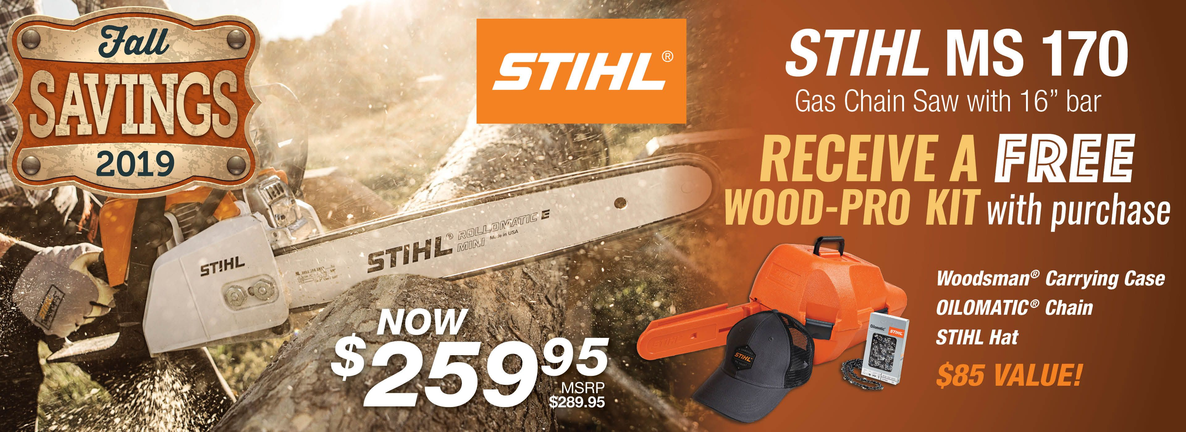 FREE Wood Pro Kit - with STIHL MS 170